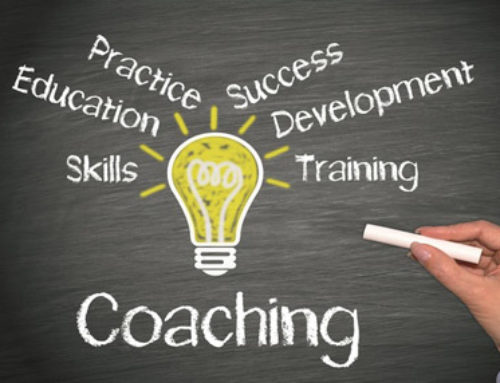 Executive Coaching & Mentorship